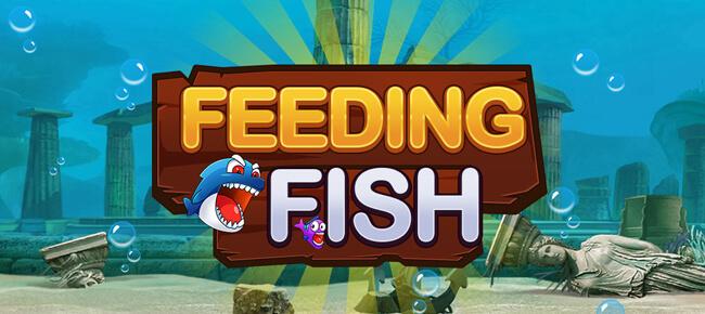 feeding frenzy app
