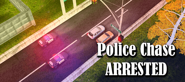 Police Chase: Arrested