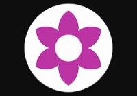 Buy Instagram Analytics App source code - Sell My App